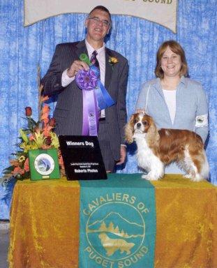 K9Kapers Dog Training Positive Dog Training Shelton, WA